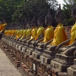 Wat Yai Chaimongkhon's line of Buddhas