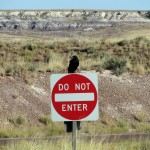 "Thus quoth the raven: ""Do Not Enter."""