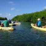 Dutch kayakers