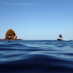 Monkey Island ahoy!