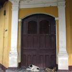 Doorway dogs