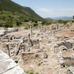 Efes unexcavated grounds